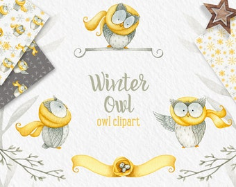 Winter Owl clipart, winter clipart, Owl clipart, digital paper, snow patterns, winter patterns, winter clip art, mustard, watercolor digital