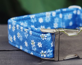 Diana. Dog Collar, Blue, Daisy, Girl, Handmade Collar