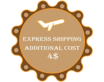 Express shipping additional cost