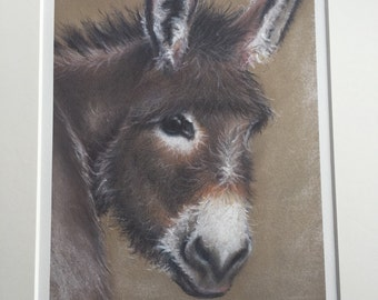 Pastel drawing 'Donkey' limited edition print