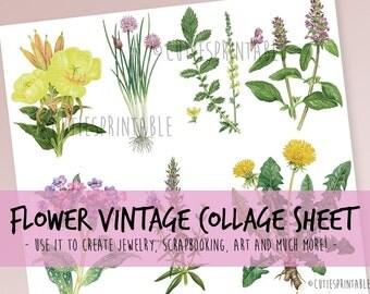 Retro Flower Collage Sheet - INSTANT DOWNLOAD - scrapbooking craft - Retro Flower - Vintage Flower isolated on white background