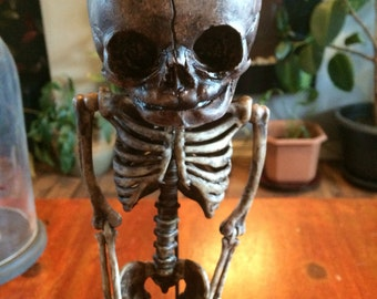 Sale Human baby skeleton replica. The price you see is the price you'll pay. No postage charges