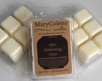 Odor Eliminating Citrus Wax Melt | Citrus Scented | Eco Friendly Soy Wax Melt | Odor Eliminator | Wax Melts