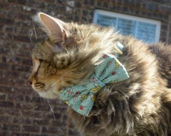 printemps douches chat avec noeud collier de chat printemps temps chat noeud papillon chat avec noeud chaton noeud papillon collier chaton
