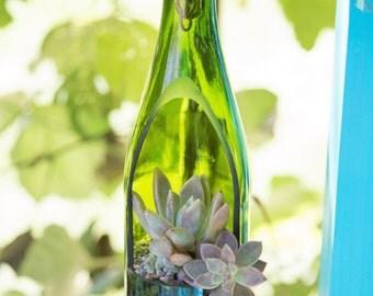 SALE- Wine Bottle Planter / Hanging Succulent Planter / Hanging Plants / Wine Gifts / Hanging Planter / Succulent Terrarium