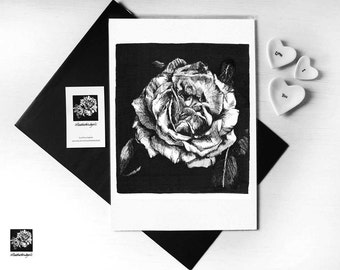 Rose Flower Illustrated print