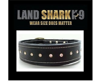 Black Leather with Soft Black Suede Inner Lining Dog Collar and Brass Fittings and Crystals
