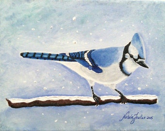 "Blue Jay on snowy branch ""The Winter Jay"""
