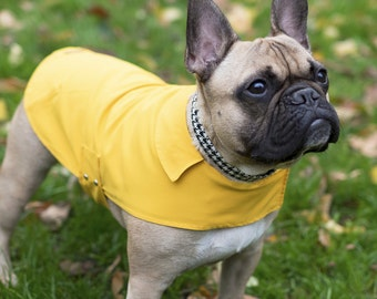 All Weather Lightweight Dog Coat in Yellow