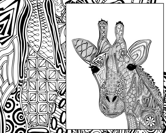 Giraffe coloring page animal coloring page adult coloring for Animal coloring pages giraffe