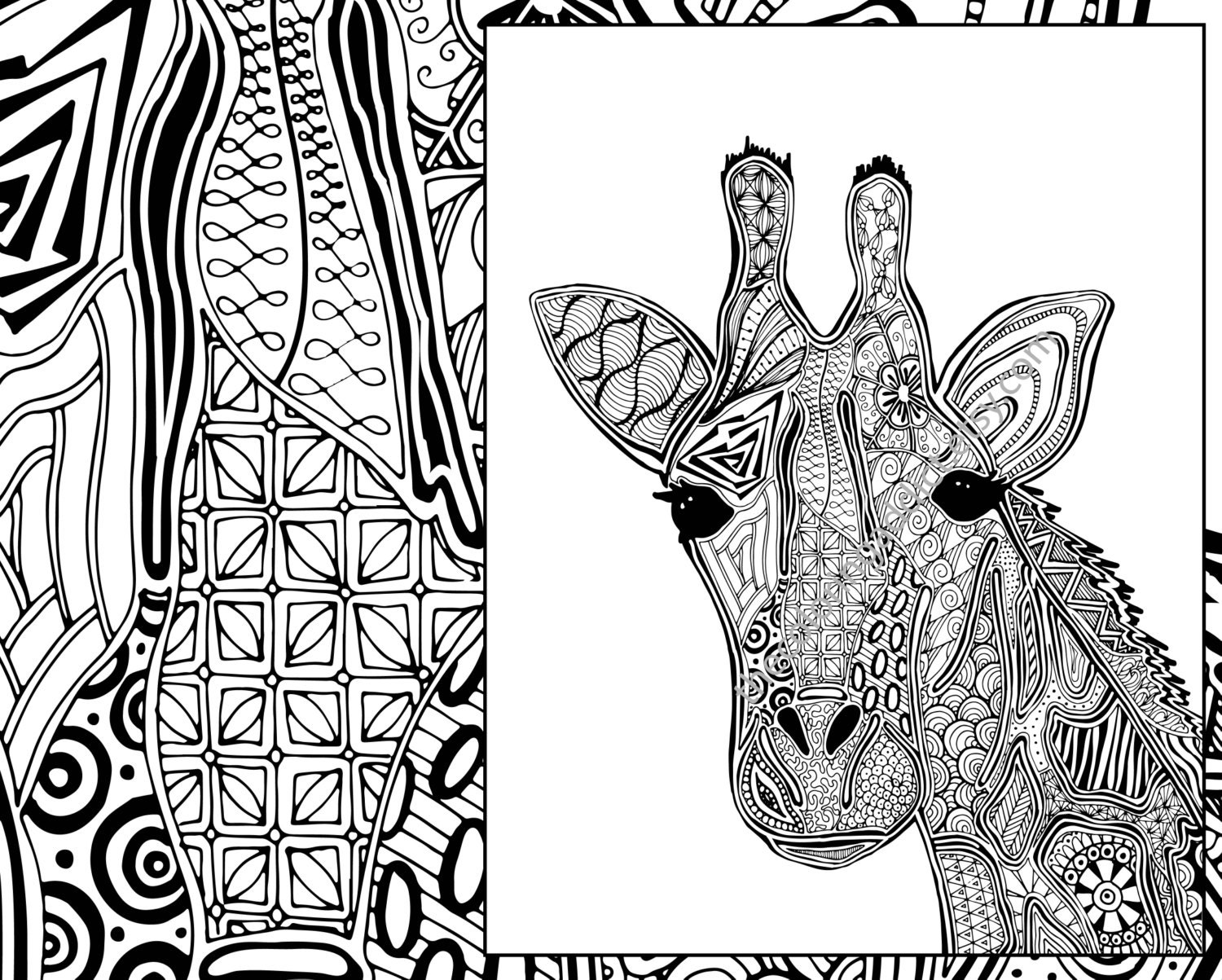 coloring page animal coloring page adult coloring