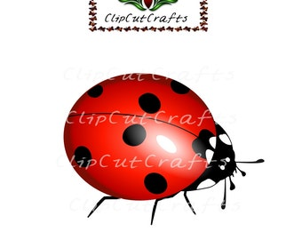 Ladybug lady bug insect Animal Cartoon Color Design Cut File Print and Cut Print & Cut Scrapbook Vector Print Vinyl Paper Craft SVG SPS PNG