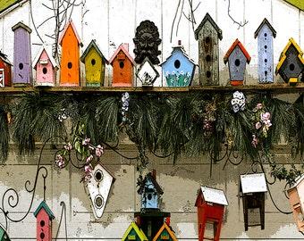BIRD HOUSES A'FLOCK