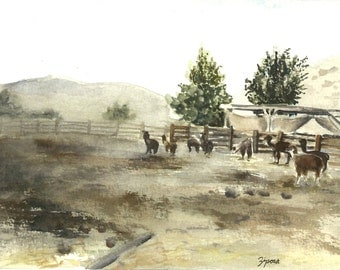 Alpaca farm in Israel. Print of landscape watercolor painting.