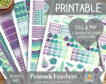 Peacock Feathers Printable Planner Stickers, Erin Condren Planner Stickers, Monthly Planner Stickers, Feathers Stickers, SILHOUETTE/ CRICUT