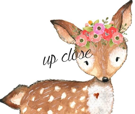 Owl Fox Deer Raccoon Forest Friends Digital Clipart ...