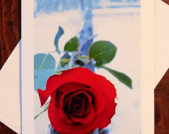 Red Rose on Fence. Photo Greeting/Note Card. Blank Inside.