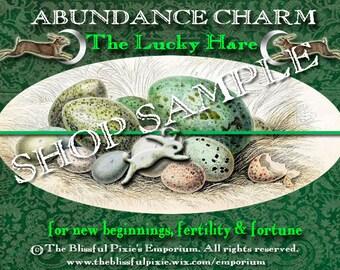 Lucky Hare Charm Bracelet