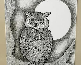Owl at night.