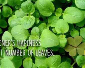 gardener happiness postcard