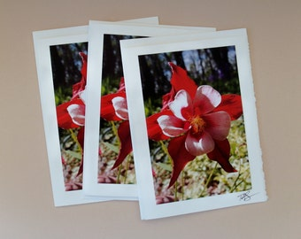 Photo Note Card #43 / Floral Series
