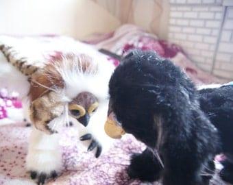 A pair of griffins Valentine's day :)