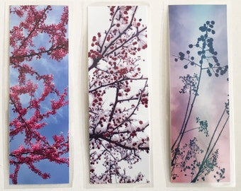 Set of 3 laminated photo bookmarks, tree branches