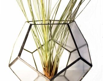 Terrarium dodecahedron