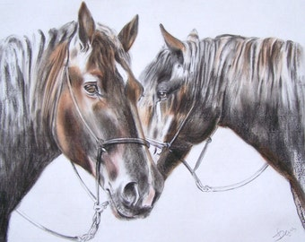 Portrait of horses, drawing with charcoal and pigments on paper, 50x65cm