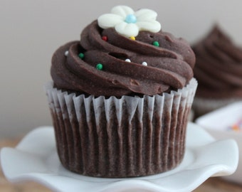 Chocolate Cupcake with Chocolate Ganache Frosting