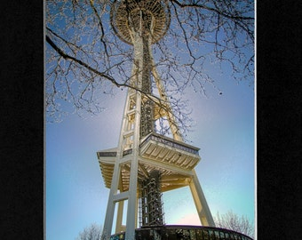 Photo at the Space Needle