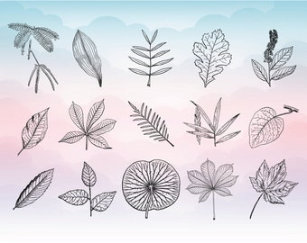 Autumn leaves SVG-  Leaf SVG - Autumn fall vector art - Svg Dxf Png Eps files for Vinyl projects - Fall leaves clipart - Leaves cut files