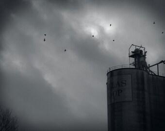 Silo, Birds, Black and White Silo, Black and White Photography, Sky, Fine Art Photography