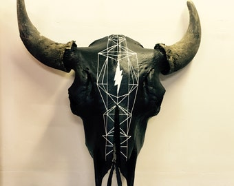 True bison skull