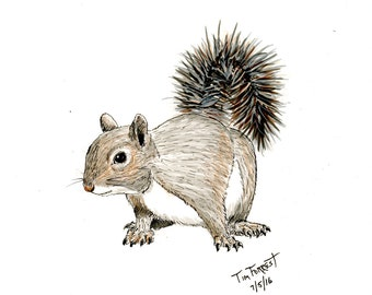 Squirrel Art Work Etsy