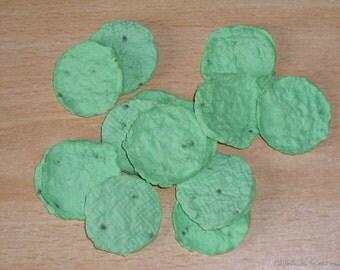 Plantable paper Basil lightgreen circle