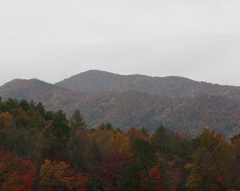 Fall In Gods Country