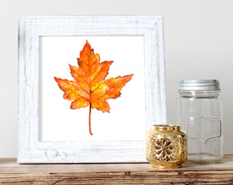 Maple Leaf Watercolor