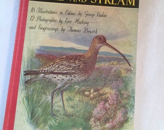 """Vintage book """" birds of moor lake and stream"""