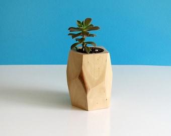 Pot for FAT or succulent plants