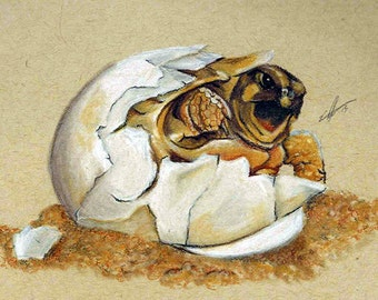 Maribou - Giclée print on archival Rag - Watercolor - Marginated Tortoise
