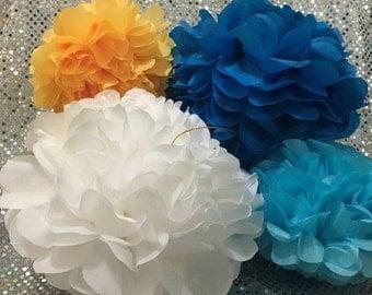 25 Tissue Pom Pom kit - Different Sizes