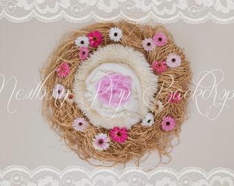 Newborn Digital Backdrop (raffia/nest/flowers/pink)
