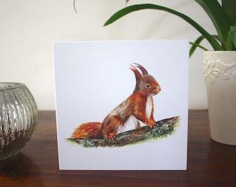15cmx15cm 'Red Squirrel' Giclée Print Greetings Card