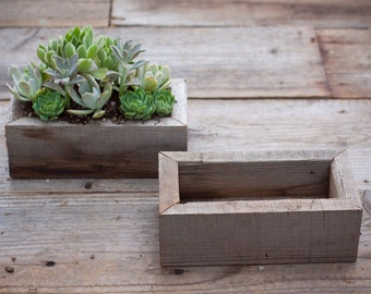 "4""x8""x2.75"" Succulent planter box"