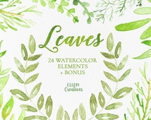 24 Watercolor Leaves Clipart, Green Watercolor Elements, Foliage, Watercolour digital paper, Watercolor graphics, olive branch, wreath, sage
