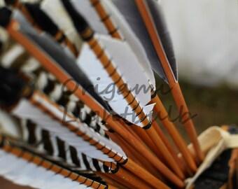 Arrow Feathers
