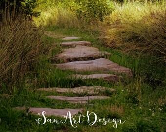 stenen pad, natuur fotografie, natuur, bos, nature, stonepath, backdrop, achtergrond, foto,forest