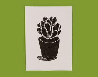 Quiet Succulent Cactus  •  Linocut Printmaking  •  Original Hand Pulled Print   •   5x7  •  Black and White  •  Crassula Dubia