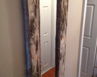 Birch Bark Mirror #6